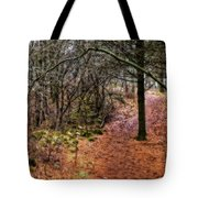 Soft Light In The Woods Tote Bag