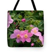 Soft Light On Nookta Rose Rosa Nutkana Tote Bag