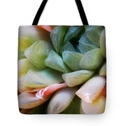 Soft Natural Succulents Tote Bag