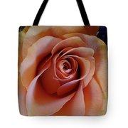 Soft Peach Rose Tote Bag