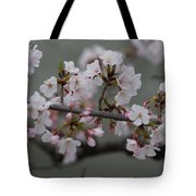 Soft Pink Blossoms Tote Bag