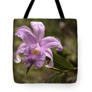Soft Pink One-day Orchid With Droplets Of Dew Tote Bag