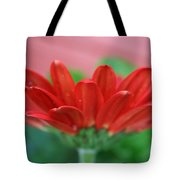 Soft Red Tote Bag