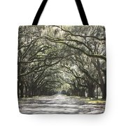 Soft Southern Day Tote Bag