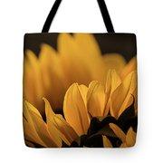 Soft Summer Light Tote Bag