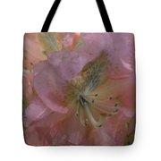 Softly Pink  Tote Bag