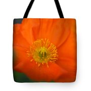 Softly Poppies Tote Bag by Kathy Yates