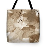 Softness Of Brown Maple Leaves Tote Bag