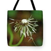 Soggy Dandelion Tote Bag