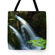 Sol Duc Falls 1 Tote Bag