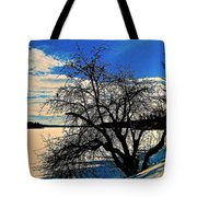 Solace On Silver Lake Tote Bag