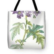 Solanum Quercifolium Tote Bag