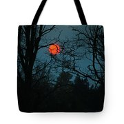 Solar Disguise Tote Bag
