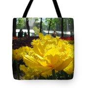 Solar Tulip Tote Bag
