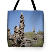 Soldier Of Misfortune Tote Bag