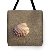 Solitary Cockle Shell Tote Bag