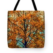 Solitary Fall Tote Bag