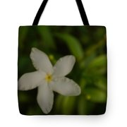 Solitary Flower Tote Bag
