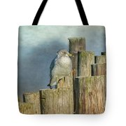Solitary Gull Tote Bag