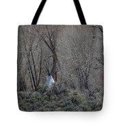Solitary Tipi Tote Bag