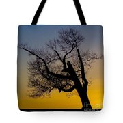 Solitary Tree At Sunset Tote Bag