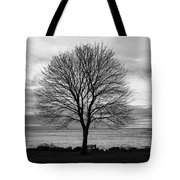 Solitude 3, New Castle Sunrise Tote Bag