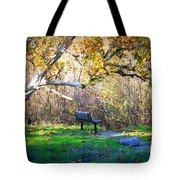 Solitude Under The Sycamore Tote Bag by Carol Groenen