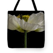 Marilyn Monroe's Dress Tote Bag