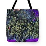 Solomon Islands Amphiprion Perideraion Tote Bag
