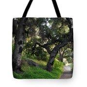 Solstice Canyon Live Oak Trail Tote Bag