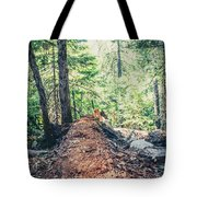Somber Walk- Tote Bag by JD Mims