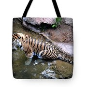 Some Cats Like Water Tote Bag
