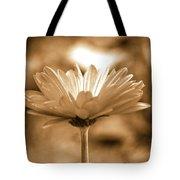 Some Shine Tote Bag