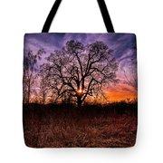 Somenos Oak Tote Bag