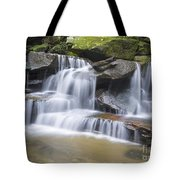 Somersby Falls 1 Tote Bag