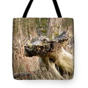 Something About A Dragon. Tote Bag