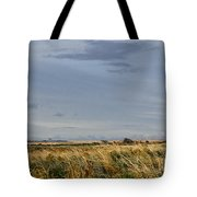 Something About Wind And Sun. Tote Bag