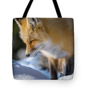 Something Down There Tote Bag