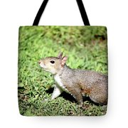 Something In The Air 259 Tote Bag