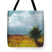 Sometimes The Light Is Just Right Tote Bag