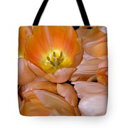 Somewhat Peachy Tote Bag