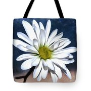 Somewhere Between The Earth And Sky Tote Bag
