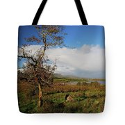 Somewhere In Ireland Tote Bag