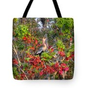 Song Of The Anhinga Tote Bag