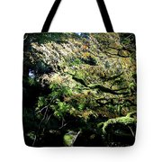 Song Of The Light 2. Tote Bag