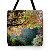 Song Of The Light. Tote Bag