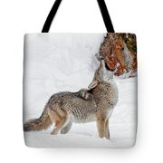 Song Of The Wild Tote Bag