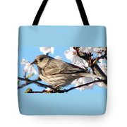 Song Sparrow Dining Out Tote Bag