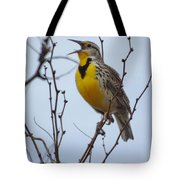 Songster Tote Bag
