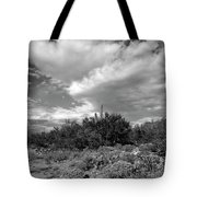 Sonoran Afternoon H10 Tote Bag